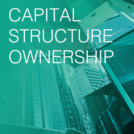 building image with caption capital structure ownership